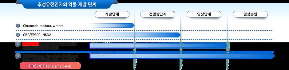 그림 4. 후성유전 약물.png