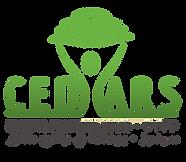 לוגו  מצפן במציאות משתנהCEDARS - רקע שקו