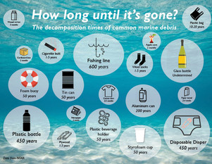 Marine Debris: One of the Most Widespread Pollution Problems
