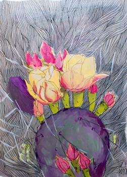 Cactus Flower Cropped.jpg