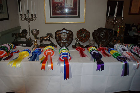 Cotswold Trophies.jpg
