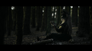 LBD- Forest 3