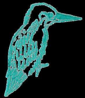 oiseau bleu.png