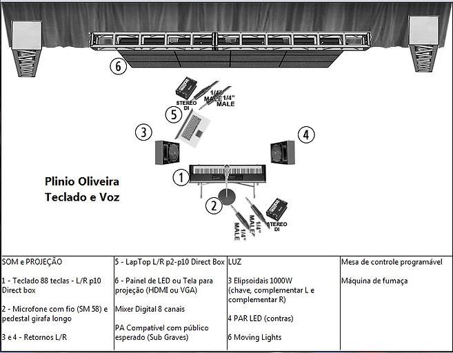 Plinio, teclado e voz JPEG.jpg