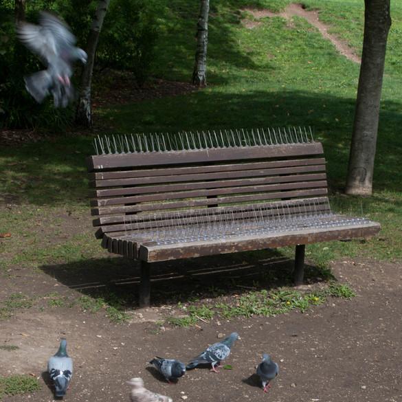 Antipigeon bench