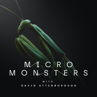 Alchemy Immersive // Micro Monsters // David Attenborough