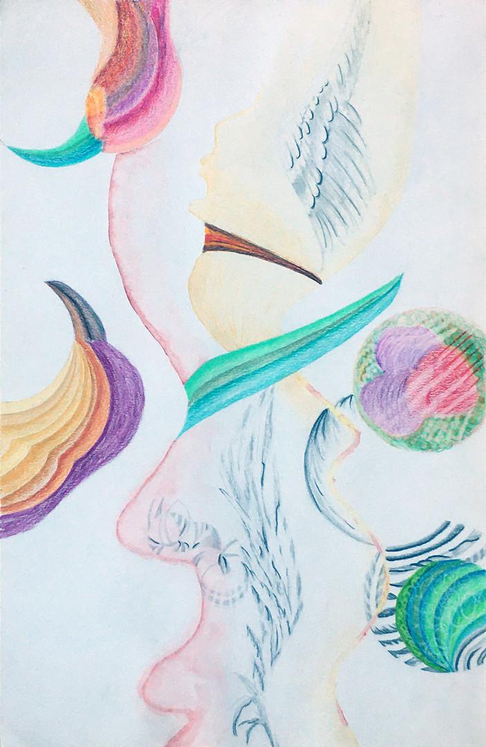 """Série Profils """"Profil oiseau"""""""