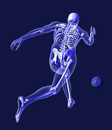 x-ray bowler.jpg