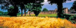 Provins, ville de foire médiévale