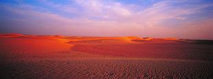Mauritanie, Parc national du banc d'Arguin