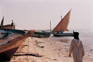 Mauritanie Parc national du banc d'Arguin