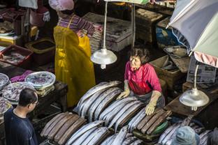 Vendor in Jagalchi fisher's market, Busa