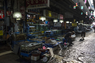 Noryangjin Fish Market, Seoul.jpg