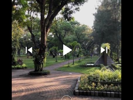 【縦動画】アップルも縦動画?