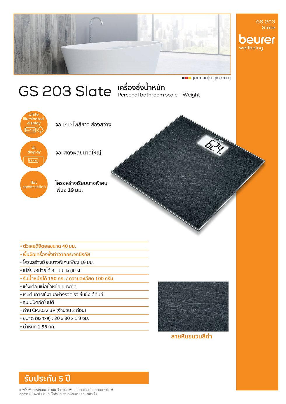GS203 Slate.jpg