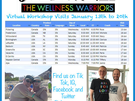 Virtual Workshop Visits January 13th to January 20th