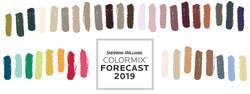 colour trends 20192