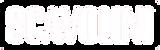 scavolini-logo.fw_ copy.png