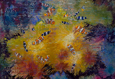 Clowns on the reef by (c)Angela Russo.jp