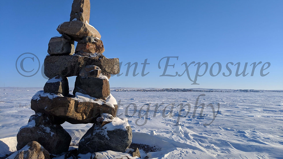*NEW* Inuksuit 10