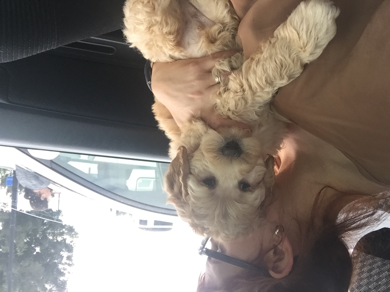 My first ride home