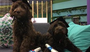 Eva and Roxy graduation (2).jpg