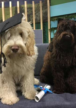 harry and juneau graduating part 2.jpg