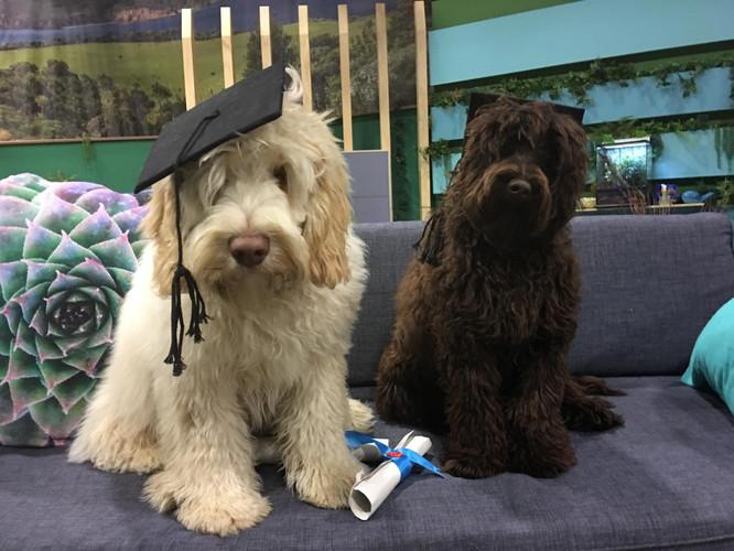 harry and juneau graduating part 2.jpg