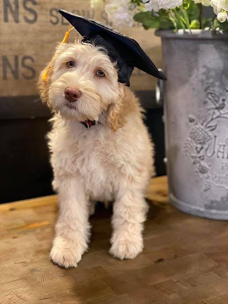 Oliver graduation.jpg