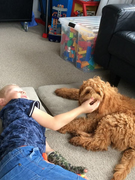 Murphy and his lil human