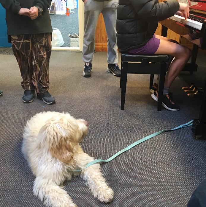 Harry and piano.jpg