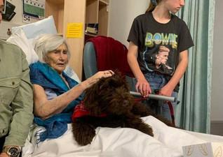Harley at hospital.jpg