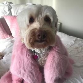 Madonna and pink coat