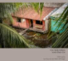 Croc Verde Solatario.jpg