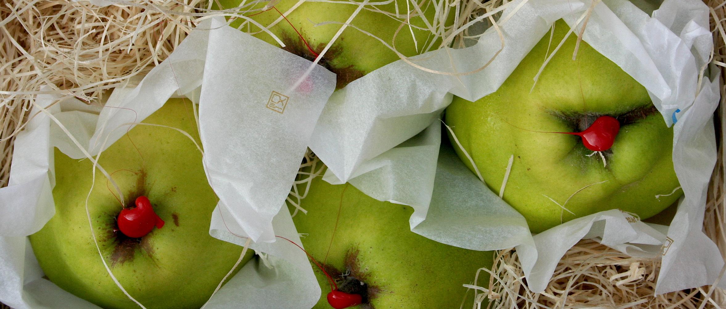 Tuscan pears.JPG