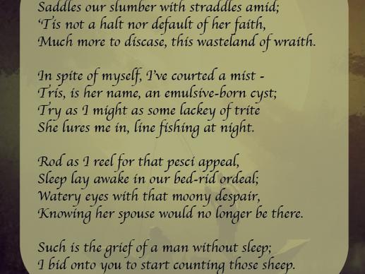 Sleepy Affair - Why It Meters | Poetry Analysis | Free Verse