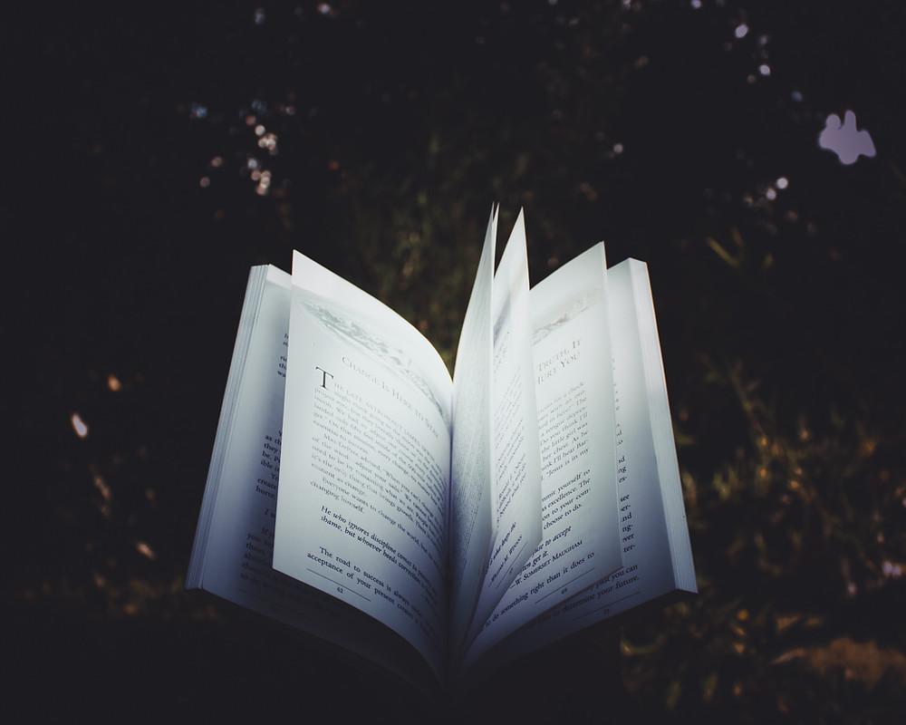 Open book in dark forest area