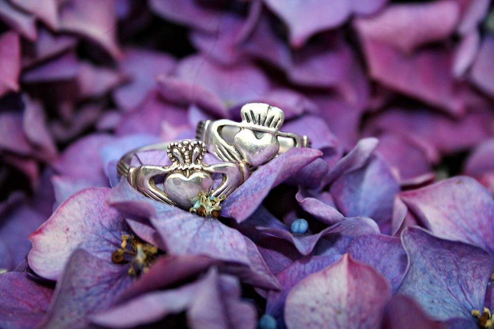 Claddagh Rings on purple flowers