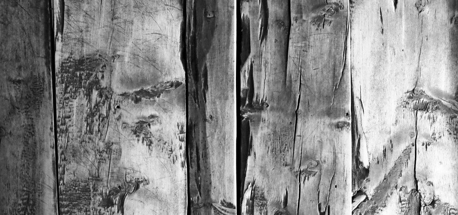 MICHAEL KINDERMANN_Wood 1.jpg
