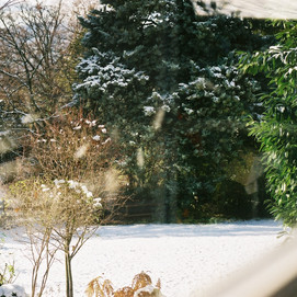 window and snow