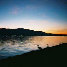 ducks paradise