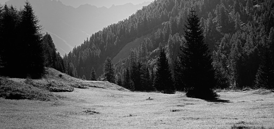 MICHAEL KINDERMANN_Landscape 1.jpg