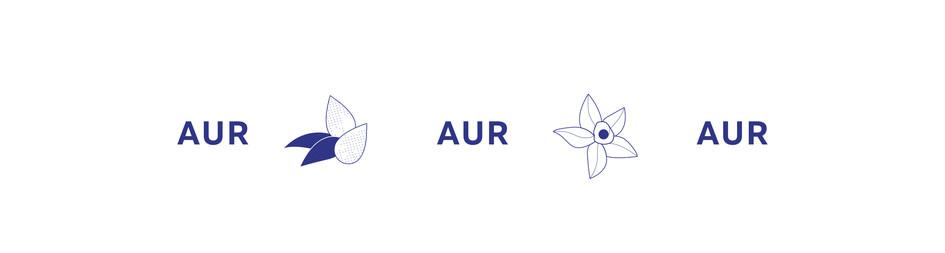 Aur BODY Icon 2.jpg