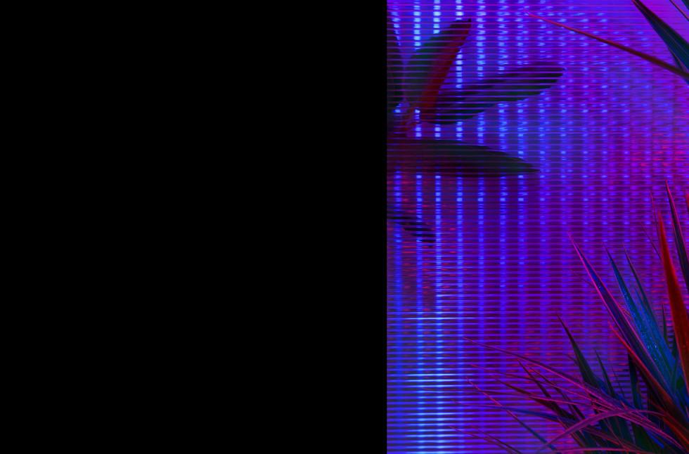 Slides2-02.jpg