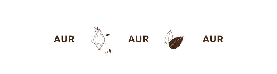 Aur BODY Icon 3.jpg