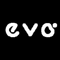 EVO_2.png