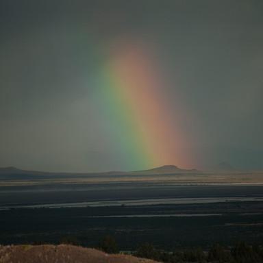 THICKEST RAINBOW
