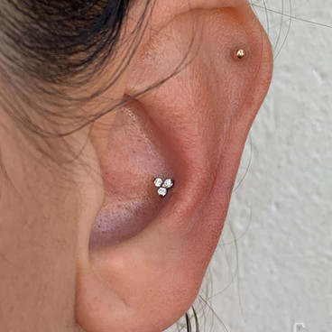 Helix, Conch