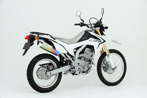 CRF250 L/M MX ANO 12