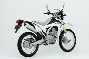CRF250 L/M MX WT 12